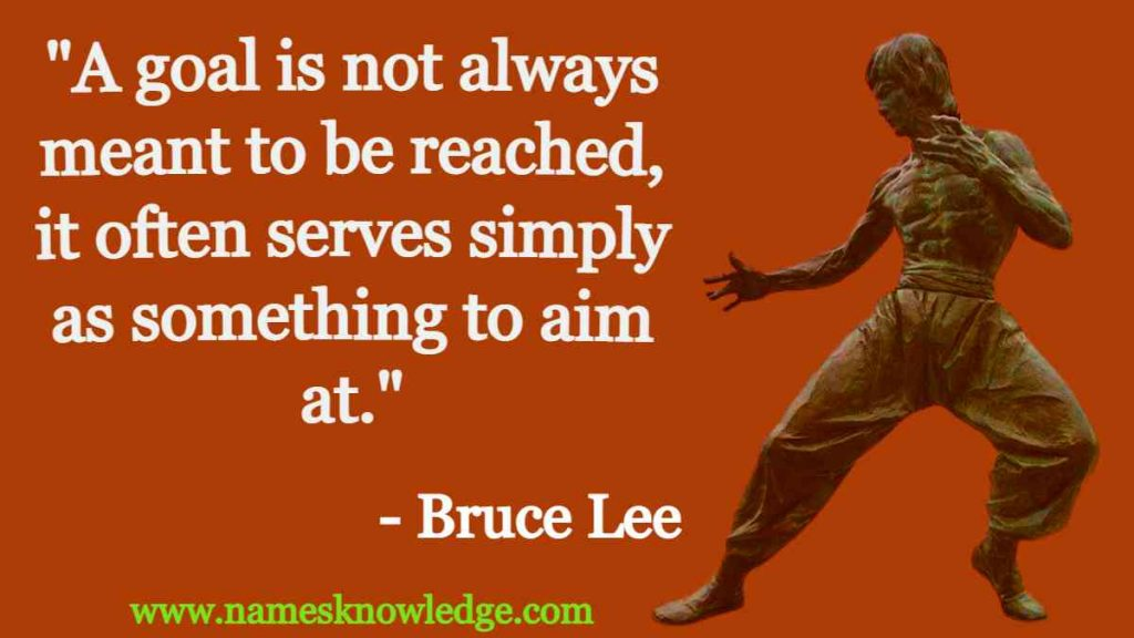 """""""A goal is not always meant to be reached, it often serves simply as something to aim at."""""""