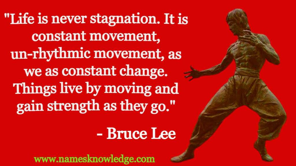 """""""Life is never stagnation. It is constant movement, un-rhythmic movement, as we as constant change. Things live by moving and gain strength as they go."""""""