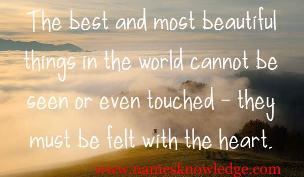 The best and most beautiful things in the world cannot be seen or even touched – they must be felt with the heart.