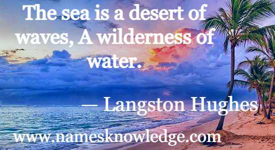 The sea is a desert of waves a wilderness of water.