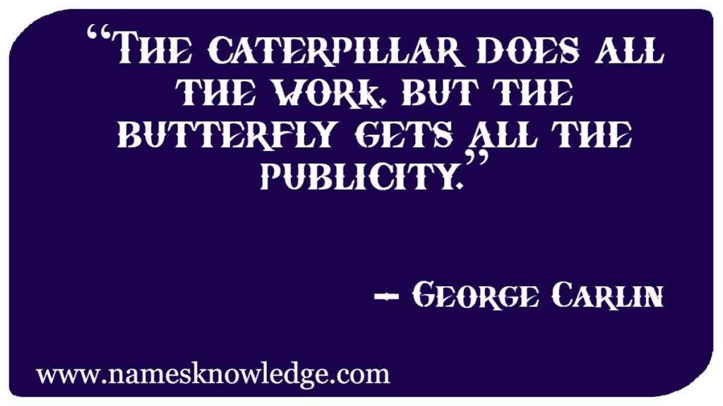 """""""The caterpillar does all the work, but the butterfly gets all the publicity."""""""