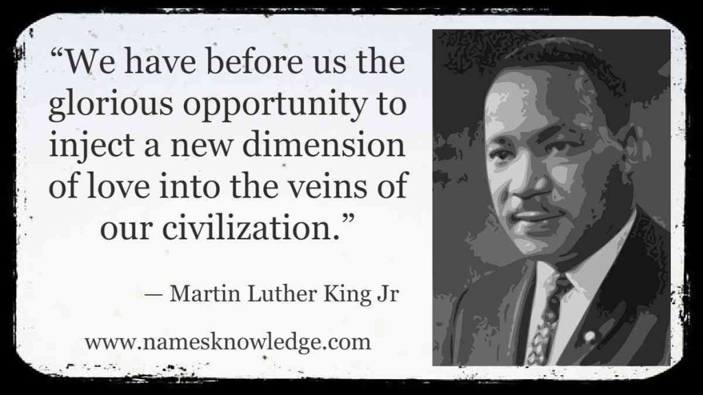 """""""We have before us the glorious opportunity to inject a new dimension of love into the veins of our civilization."""""""