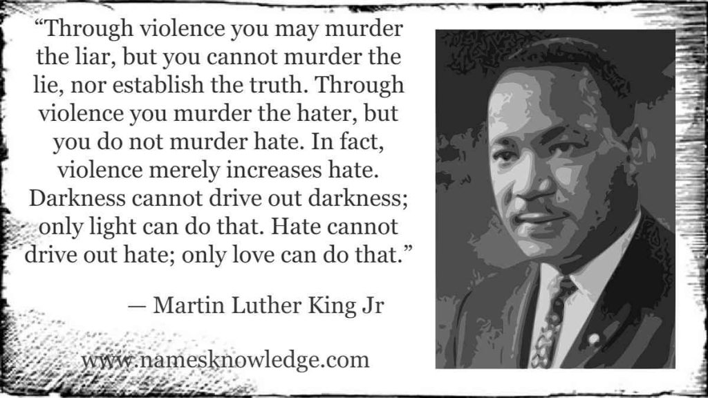 """""""Through violence you may murder the liar, but you cannot murder the lie, nor establish the truth. Through violence you murder the hater, but you do not murder hate. In fact, violence merely increases hate. Darkness cannot drive out darkness; only light can do that. Hate cannot drive out hate; only love can do that."""""""