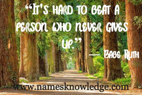 """Quotes of Babe Ruth - """"It's hard to beat a person who never gives up."""""""