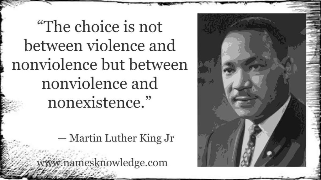 """""""The choice is not between violence and nonviolence but between nonviolence and nonexistence."""""""