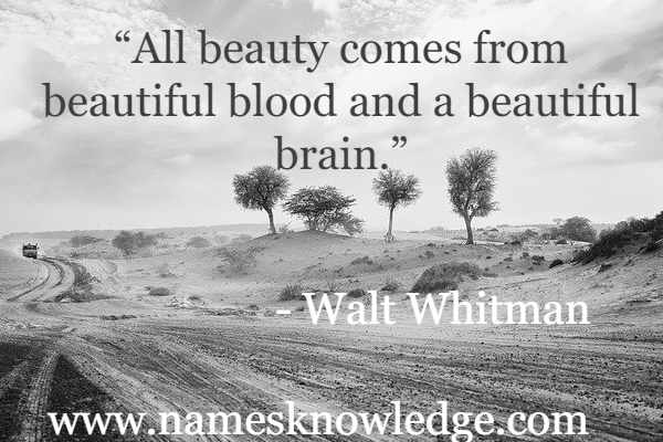 """""""All beauty comes from beautiful blood and a beautiful brain."""""""
