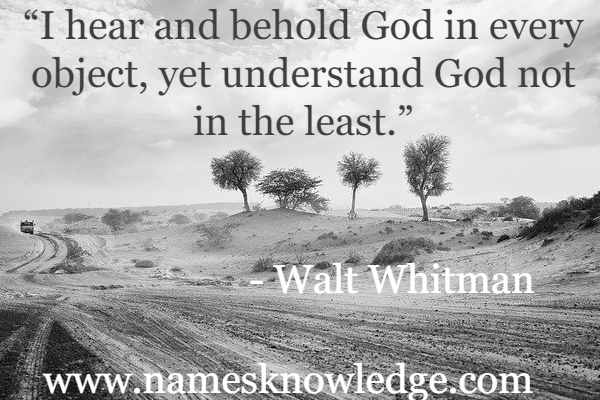 """Walt Whitman Quotes - """"I hear and behold God in every object, yet understand God not in the least."""""""