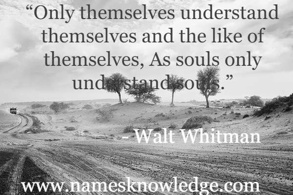 """""""Only themselves understand themselves and the like of themselves, As souls only understand souls."""""""