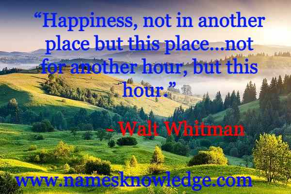 """Walt Whitman Quotes - """"Happiness, not in another place but this place…not for another hour, but this hour."""""""