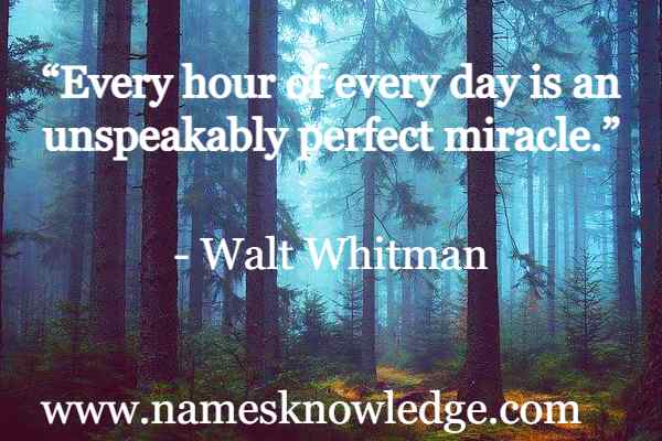 """""""Every hour of every day is an unspeakably perfect miracle."""""""