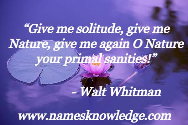 Walt Whitman Quotes about Nature