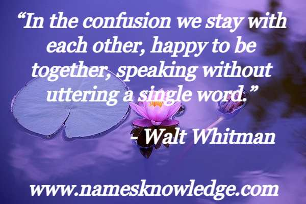 """""""In the confusion we stay with each other, happy to be together, speaking without uttering a single word."""""""