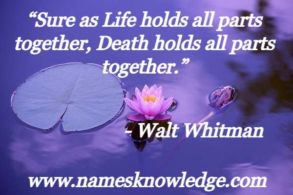 """""""Sure as Life holds all parts together, Death holds all parts together."""""""