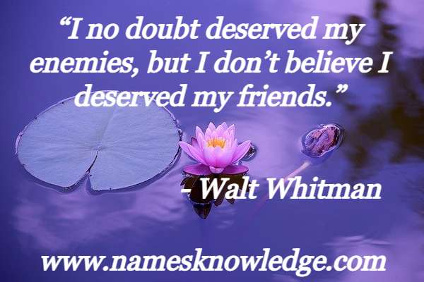 """Walt Whitman Quotes - """"I no doubt deserved my enemies, but I don't believe I deserved my friends."""""""