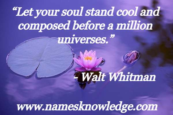 """""""Let your soul stand cool and composed before a million universes."""""""