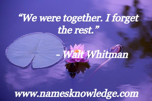 """Walt Whitman Quotes - """"We were together. I forget the rest."""""""