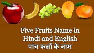Five Fruits Name in Hindi and English