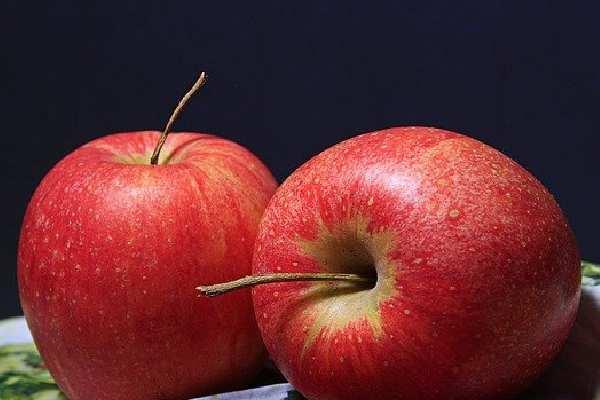 Five Fruits Name - Apple