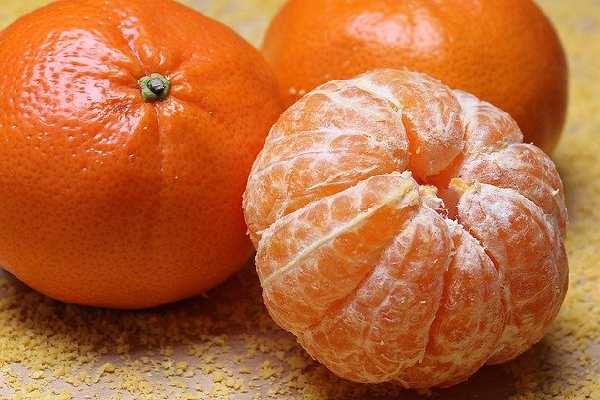 Five Fruits Name - Orange